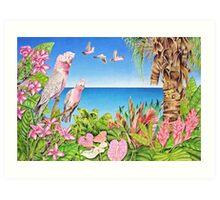 Australian Pink Galahs Art Print