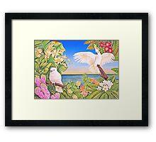Sulfer-crested Cockatoos Framed Print