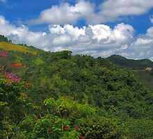 Ciales Revealed 01  by lightboxfactory
