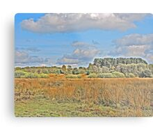 Nature for Artistic Needs Metal Print