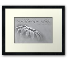 Go placidly . . . Framed Print