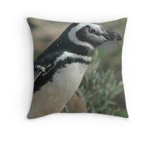 Magellanic Penguin Throw Pillow