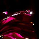 Spark of Hope  by Nicole  Markmann Nelson
