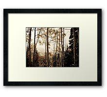 Autumn Mountain Framed Print