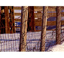 Martyn's Fence Photographic Print