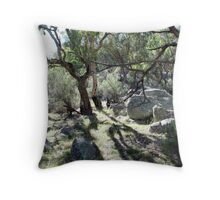 Morning at Mt Yarrowyck Throw Pillow
