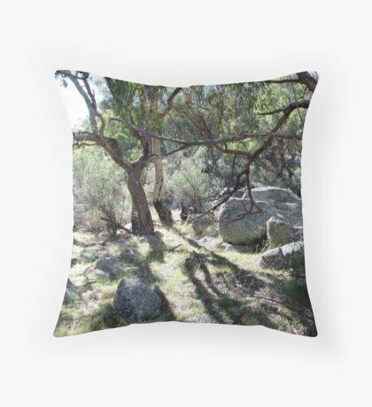 Morning at Mt Yarrowyck Throw Pillow