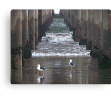 The Gulls Canvas Print
