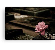 A Rose of Cloth Canvas Print