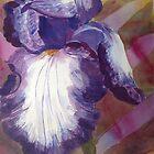 Bearded Lady Purple Iris by Estelle O'Brien