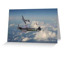 Spitfire - 'Tally Ho' Greeting Card