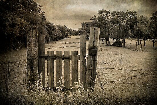 Through the Old Farm Gate by Boston Thek Imagery