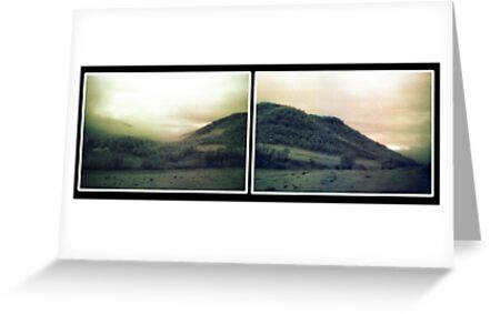 muted landscape paired version by Juilee  Pryor