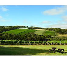 Red Hill Photographic Print