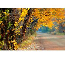 Fall-Tastic Photographic Print