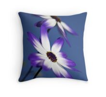 Senetti Throw Pillow