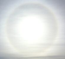 Sun Halo over Sydney by Rosie Appleton