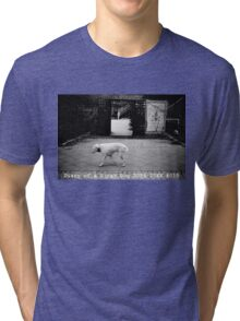 Diary of a Stray Dog 2006-20XX #015 Tri-blend T-Shirt