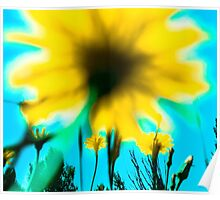 Blue Shadow Dream Flowers Poster