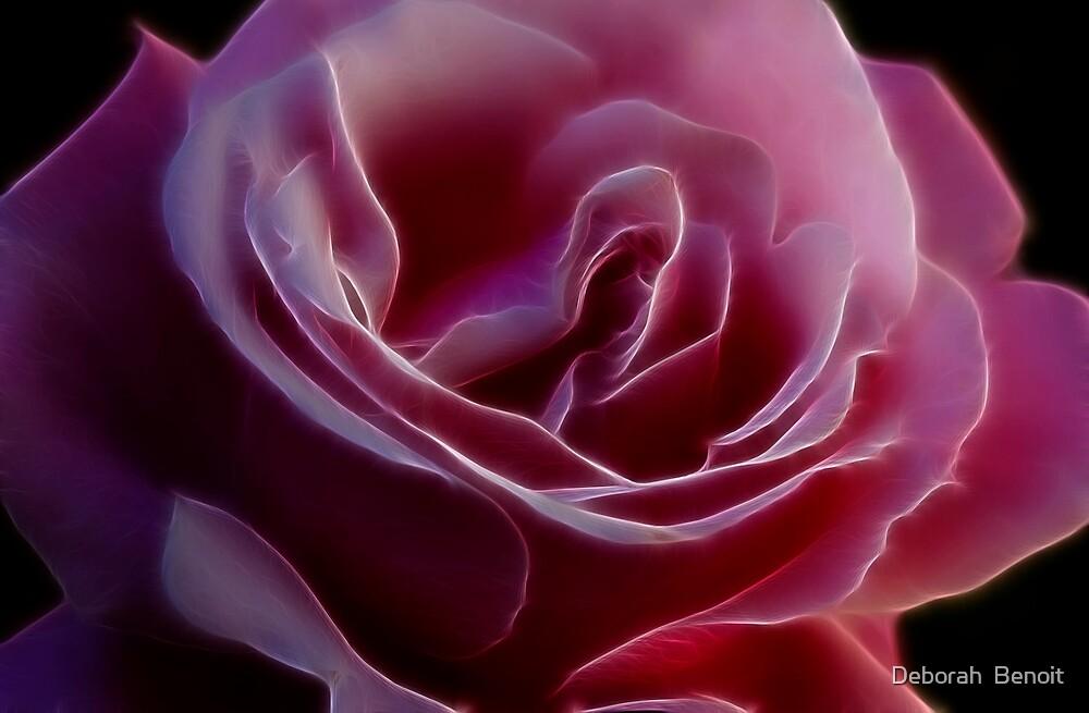 Pink Rose Portrait by Deborah  Benoit