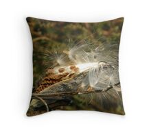 Gonna Fly Now! Throw Pillow