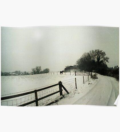 Pilgrim's Trail, Nr. Owlesbury Poster