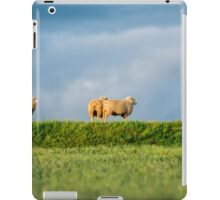 Errowanbang 19 iPad Case/Skin