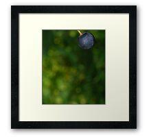 Swing... Framed Print