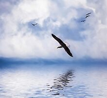 Floating On Air by Diane Schuster