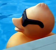 I WEAR MY SUNGLASSES...CUTE FLOATING DUCK PICTURE AND OR PRINT ECT. by ✿✿ Bonita ✿✿ ђєℓℓσ