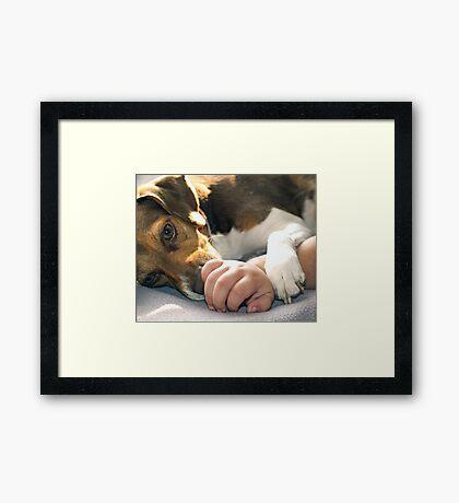Licky Licky Framed Print