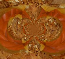 Pumpkin Insides Polar Inversion  by Jonice