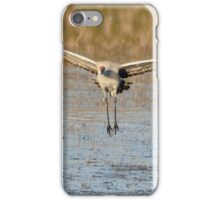 In the Morning Flightpath iPhone Case/Skin