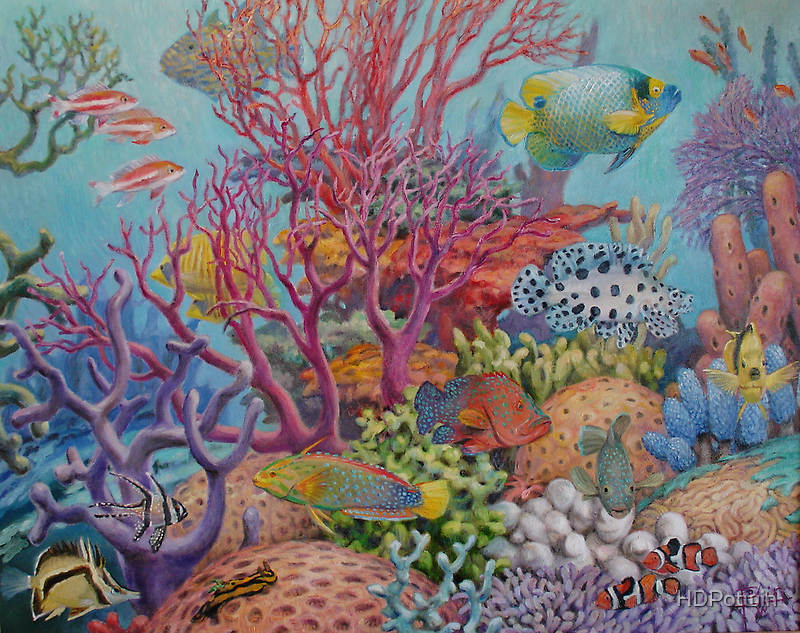 South Sea Reef by HDPotwin