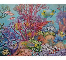 South Sea Reef Photographic Print