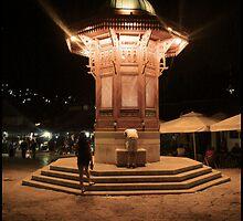 Sarajevo by Nusreta Buljubasic