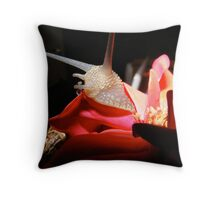 snail for sale Throw Pillow