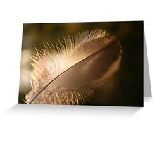 journey of a feather 2 Greeting Card