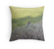 Sparrow in resting Throw Pillow