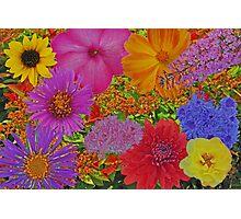 FLOWER GARDEN COLLAGE Photographic Print