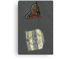 dead butterfly Canvas Print