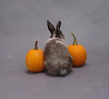 Hoppy Halloween! by InKibus