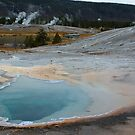 Yellowstone Jewels by Dennis Jones - CameraView