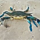 Ghost Crab by Angel Perry