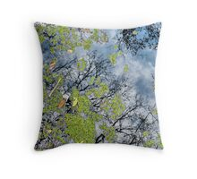 Reflection In  A Pond Throw Pillow