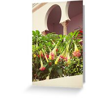 Arch and Trumpet Flowers Greeting Card