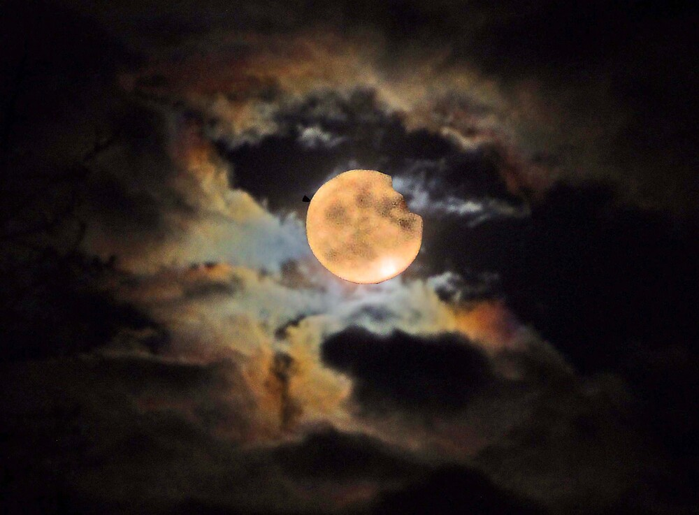 A CELESTIAL TREAT OR IS IT A TRICK??? A GREAT MOON  by MsLiz