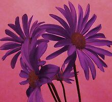 Delicate Purple Flowers by Adri Turner