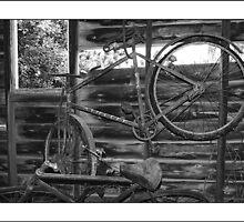 Old bikes by Rosina  Lamberti