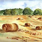 Oxford Hay Field by LinFrye